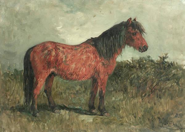 Horseshoes Painting - A Shetland Pony by John Emms