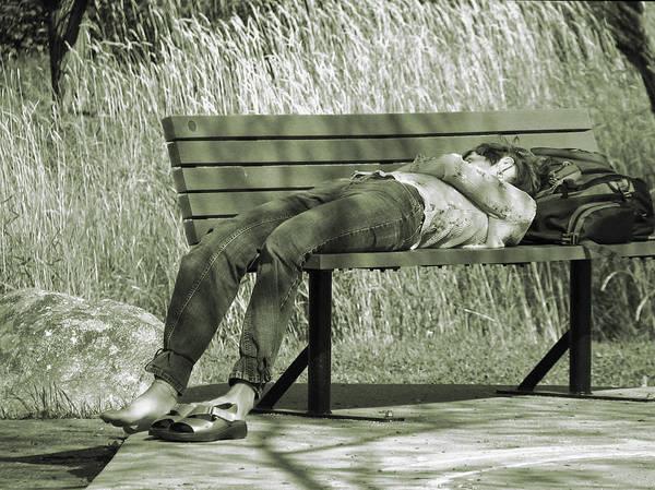 Monotone Photograph - A Short Nap  by Maggie Terlecki
