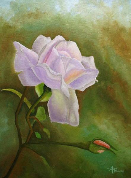 A Single Rose Art Print