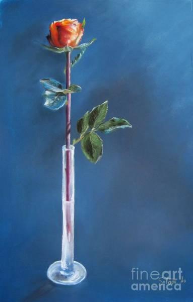 Wall Art - Painting - A Single Rose by Sabina Haas