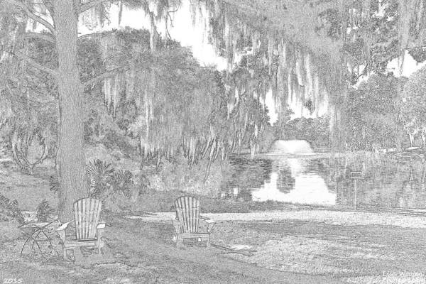 Photograph - A Sketchy Garden At Charles Towne Landing by Lisa Wooten