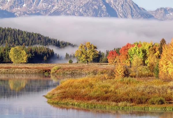Photograph - A Slice Of Oxbow Bend by Wes and Dotty Weber