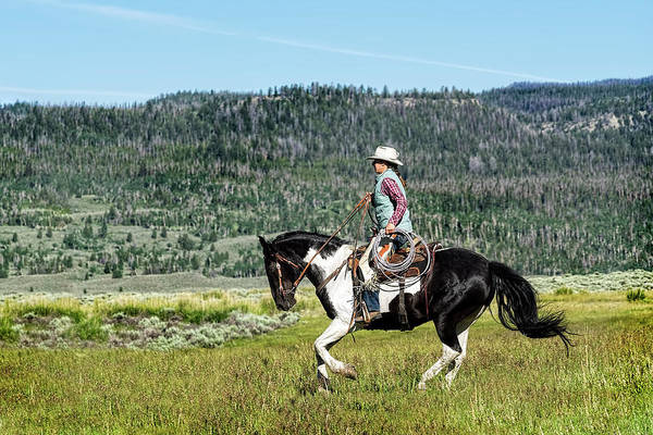 Photograph - A Slow Trot On The Wyoming Range by Kay Brewer