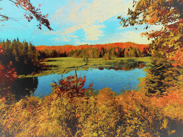 Photograph - Shep Marsh Vermont by Rusty R Smith
