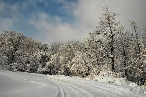 Photograph - A Snowy Road In The Laurel Highlands by Lois Bryan