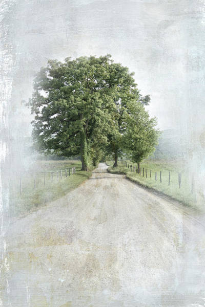 Photograph - A Solitary Road by Jai Johnson