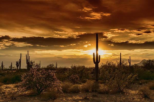 Silhoutte Photograph - A Southwest Sunset In Gold  by Saija Lehtonen