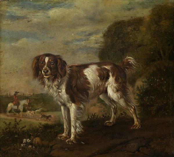 Painting - A Spaniel by Celestial Images