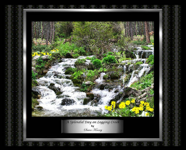 A Splendid Day On Logging Creek Art Print