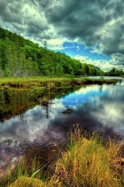 Photograph - A Spring Morning At The Pond by David Patterson