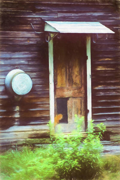 Photograph - A Still Llife Portrait Of The Door On The Old Homestead by Rusty R Smith