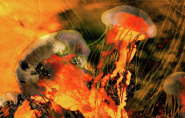 Photograph - A Sting Like Fire by Susan Maxwell Schmidt