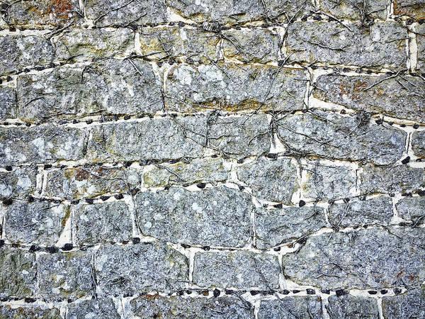 Wall Art - Photograph - A Stone Wall by Tom Gowanlock