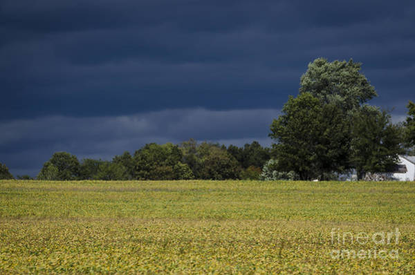 Photograph - A Storm Is Coming by Andrea Silies
