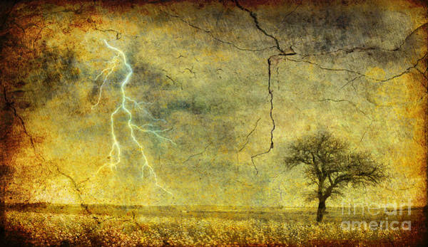 Wall Art - Photograph - A Stormy Spring by Silvia Ganora