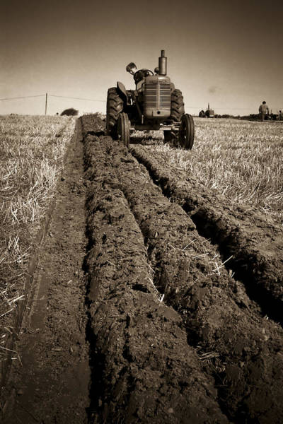 Photograph - A Straight Furrow by Peter OReilly