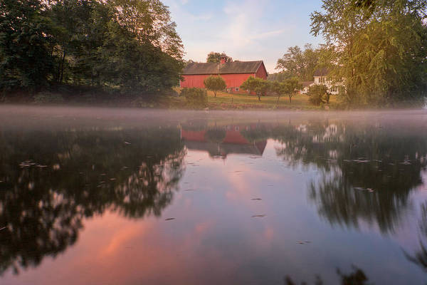 Photograph - A Summer Morning by Bill Wakeley