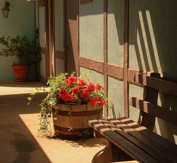Solvang Photograph - A Sunny Spot by Susanne Van Hulst
