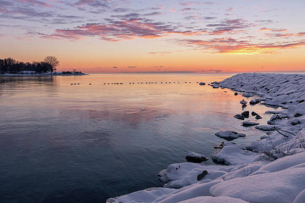 Photograph - A Sunrise Goose Train In Violet And Orange by Georgia Mizuleva