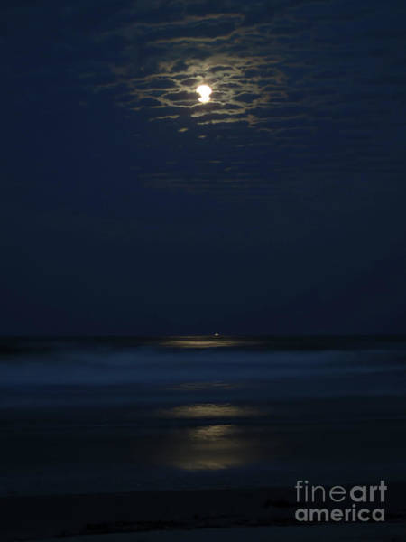 Photograph - A Supermoon Kinda Night by D Hackett