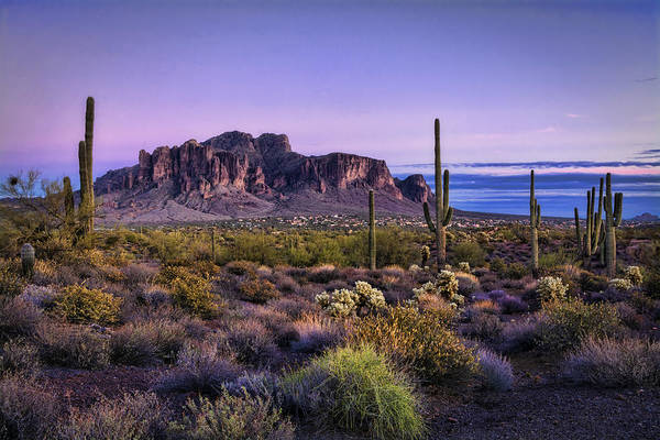 Sonoran Desert Photograph - A Superstitious Evening  by Saija Lehtonen