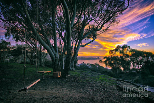 A Swinging Sunset From The Secret Swings Of La Jolla Art Print
