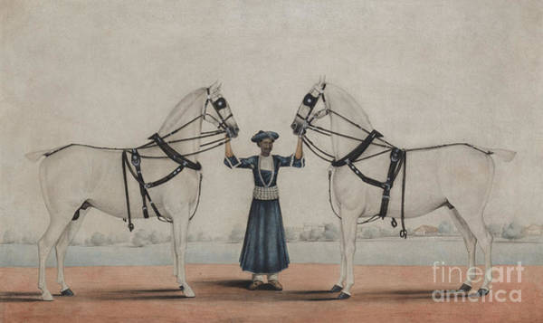 Reins Painting - A Syce, Groom, Holding Two Carriage Horses by Shaik Muhammad Amir of Karraya