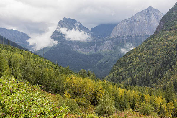 Photograph - A Taste Of Things To Come - Glacier Np by Belinda Greb
