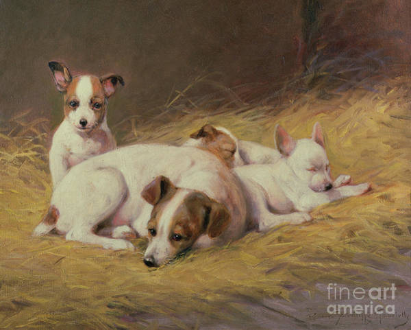 Wall Art - Painting - A Terrier With Three Puppies by Gabrielle Rainer-Istuanty
