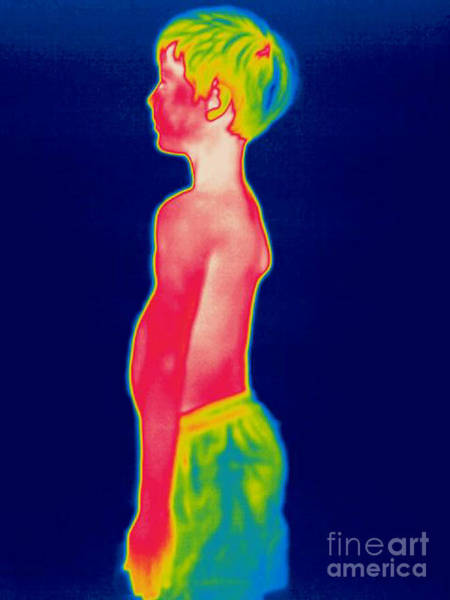 Infrared Radiation Photograph - A Thermogram Of A Boy In Shorts Profile by Ted Kinsman