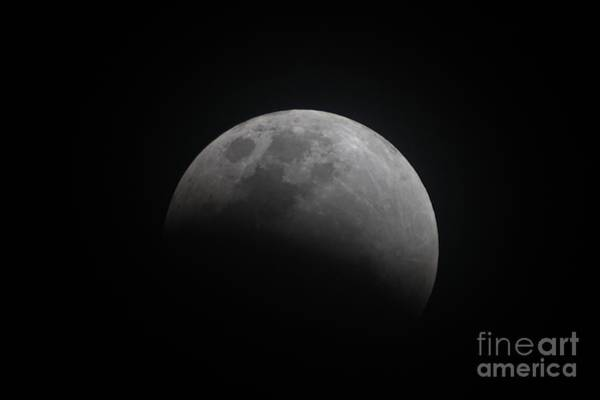 Photograph - A Third Of The Super Blue Blood Moon Eclipse by Christopher Shellhammer