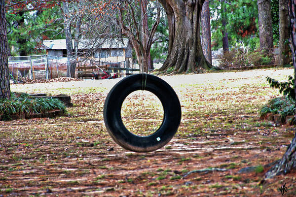 Photograph - A Tire Swing by Gina O'Brien