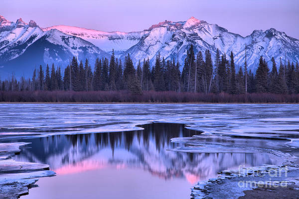 Photograph - A Touch Of Pink In Vermilion Lakes by Adam Jewell