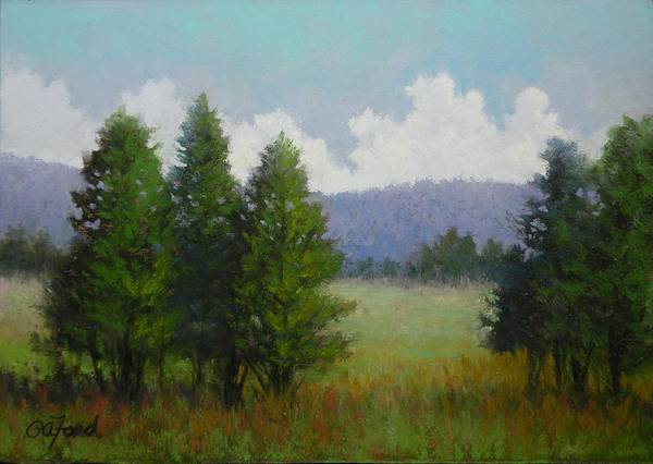 Wall Art - Painting - A Tree's View by Paula Ann Ford
