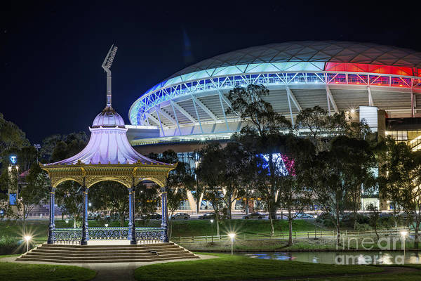 Photograph - A Tribute From Adelaide by Ray Warren