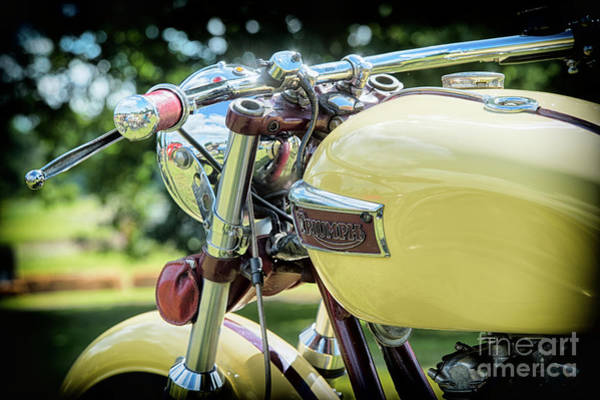 Photograph - A Triumph by Tim Gainey