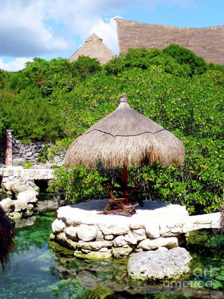 Photograph - A Tropical Place To Relax by Francesca Mackenney