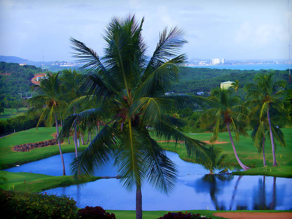 Photograph - A Tropical View by Roberta Byram