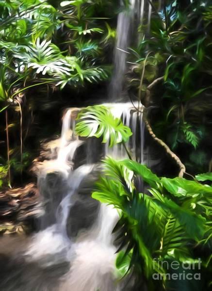 Photograph - A Tropical Waterfall by Mel Steinhauer