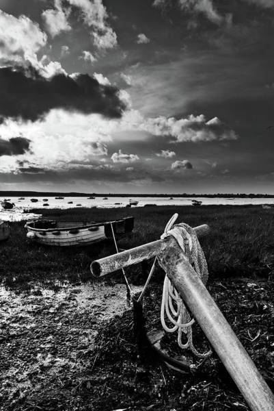 Leigh On Sea Photograph - A Two Tree Story by Iain Phillips