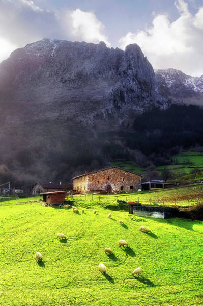 A Typical Basque Country Farmhouse With Sheep Art Print