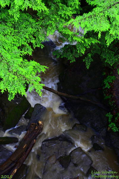 Photograph - A View From Above by Lisa Wooten