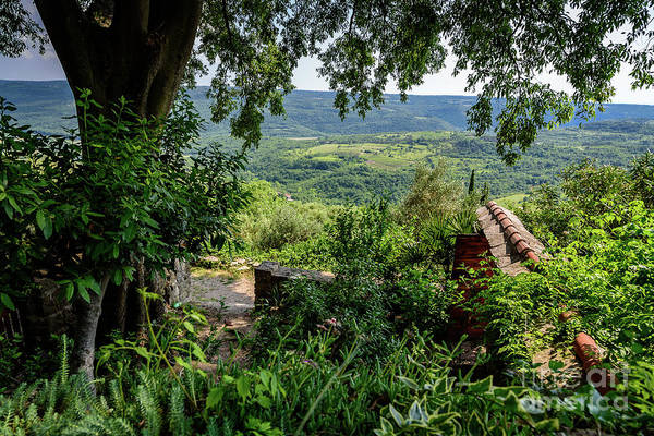 A View From Groznjan Of The Istrian Hill Town Countryside, Istria, Croatia Art Print