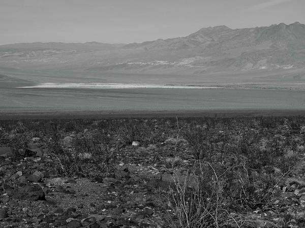 Photograph - A View Of Death Valley by Frank DiMarco