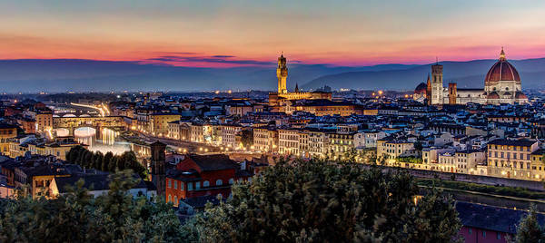 A View Of Florence Art Print