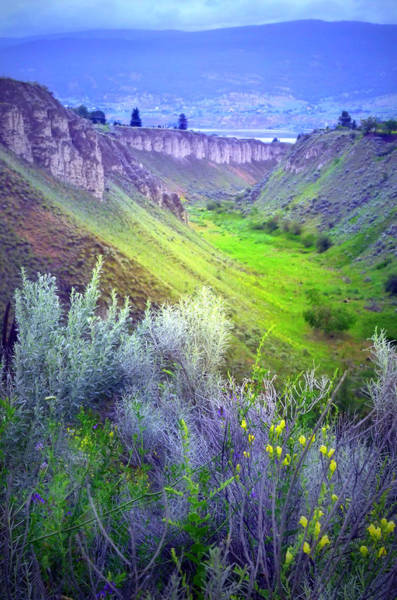 Snap Dragons Wall Art - Photograph - A View Of The Valley by Tara Turner