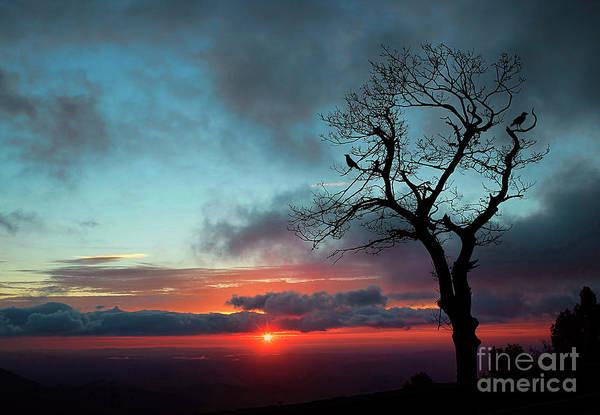 Wall Art - Photograph - A Virginia Kind Of Sunrise by Darren Fisher