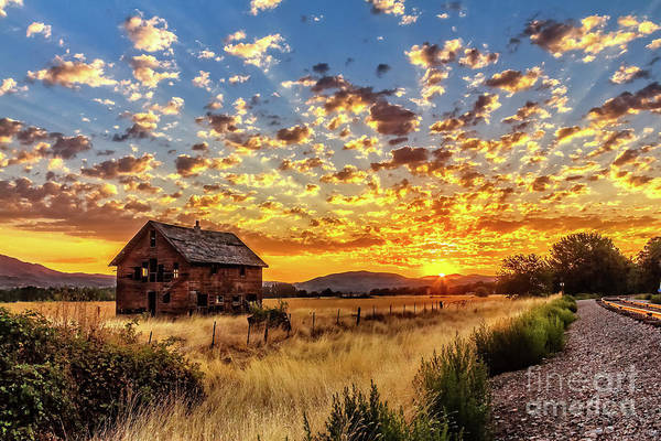 Wall Art - Photograph - A Vivid Sunrise by Robert Bales