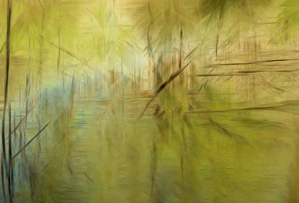 Photograph - A Walk Along The Creek by Deborah Hughes