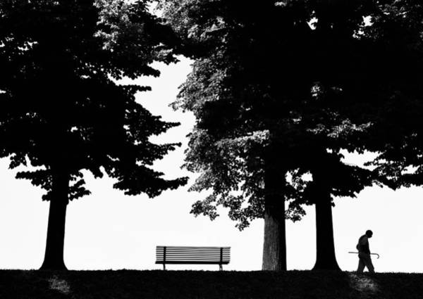 Sienna Photograph - A Walk In The Park by Artecco Fine Art Photography